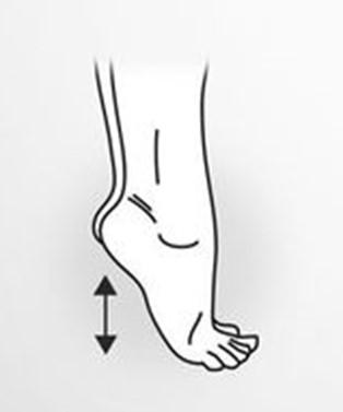 podizanje i spustanje na nozne prste