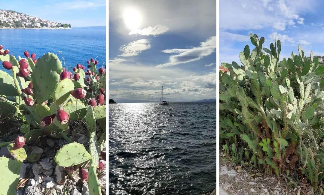 otok ciovo, prirodne ljepote